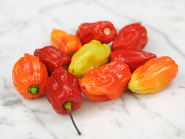 Grenadian seasoning - hot pepper